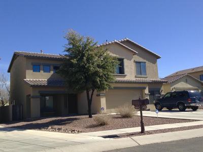 Sahuarita Single Family Home For Sale: 15179 S Via Rancho Grande Drive