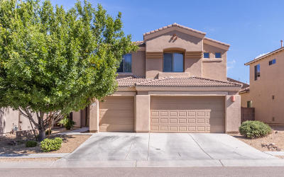 Single Family Home Active Contingent: 10407 S Painted Mare Drive