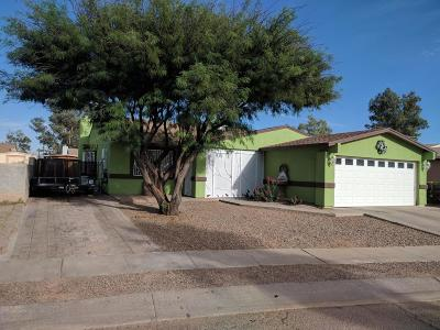 Tucson Single Family Home For Sale: 6081 S Chateau Way