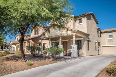 Sahuarita Single Family Home For Sale: 130 W Camino Espiga