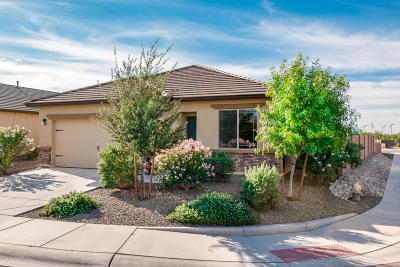 Marana Single Family Home For Sale: 11409 W Folsom Point Drive
