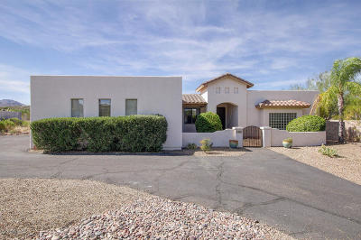 Tucson Single Family Home For Sale: 2185 N Painted Hills Road