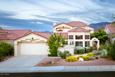 Tucson Single Family Home For Sale: 9966 N Bighorn Butte Drive