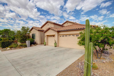Marana Single Family Home For Sale: 4920 W New Shadow Way