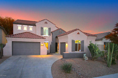 Tucson Single Family Home For Sale: 10042 N Blue Crossing Way