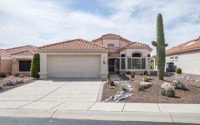 Oro Valley Single Family Home For Sale: 14061 N Cirrus Hill Drive
