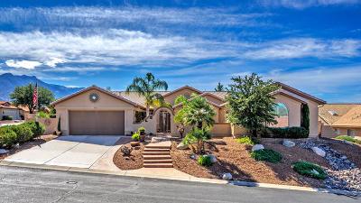 Tucson Single Family Home For Sale: 65871 E Desert Sands Drive