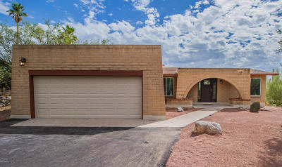 Tucson Single Family Home For Sale: 3854 E Gibbon Mountain Place