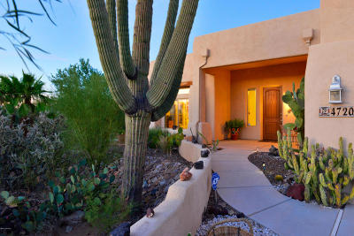 Tucson Single Family Home For Sale: 4720 W Oasis Road