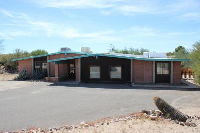 Tucson Single Family Home For Sale: 10742 E Avenida Hacienda
