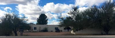 Tucson Single Family Home For Sale: 7161 N Mona Lisa Road