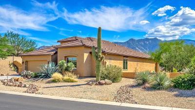 Tucson Single Family Home For Sale: 62651 E Ironwood Lane