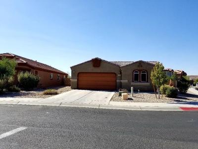 Tucson AZ Single Family Home For Sale: $254,000