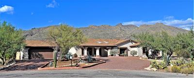 Tucson Single Family Home For Sale: 10361 E Kaibito Place