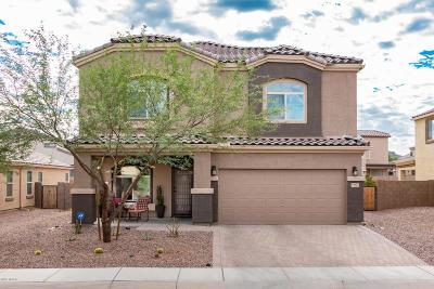 Marana Single Family Home For Sale: 8767 W Saguaro Moon Road