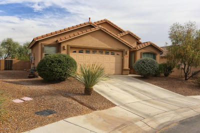 Marana Single Family Home For Sale: 12596 N Skoda Drive