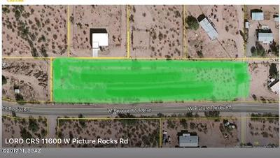 Residential Lots & Land For Sale: 11600 W Picture Rocks Road