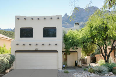 Oro Valley Single Family Home For Sale: 1785 E Deer Hollow Loop