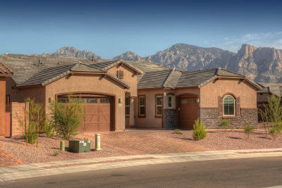 Oro Valley Single Family Home For Sale: 12944 N Morgan Ranch Road