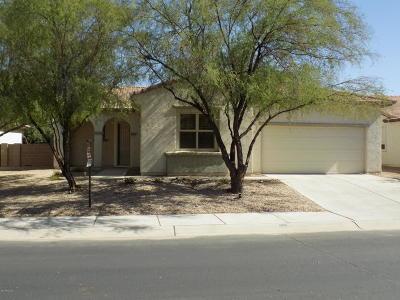 Marana Single Family Home For Sale: 12712 N Quinoa Drive