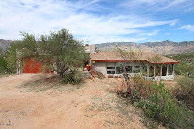 Vail Single Family Home For Sale: 7781 S Pistol Hill Road