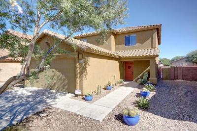 Single Family Home For Sale: 6861 S Creek Run Avenue