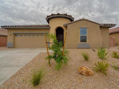 Sahuarita Single Family Home For Sale: 1426 E Stronghold Canyon Lane