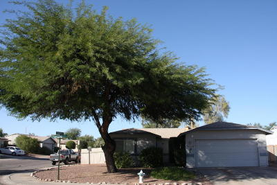 Tucson Single Family Home For Sale: 2590 W Dolbrook Way