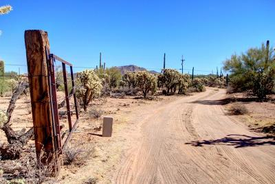 Tucson Single Family Home Active Contingent: 12606 W Fort Lowell Road