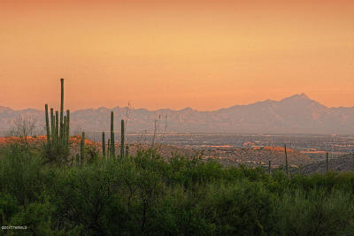 Tucson Residential Lots & Land For Sale: 6565 N Thimble Pass