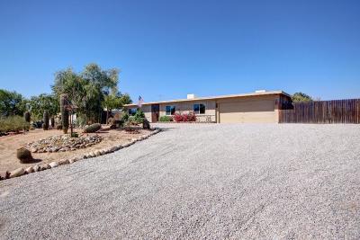 Tucson Single Family Home For Sale: 2390 W Rapallo Way