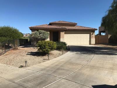 Tucson Single Family Home For Sale: 10470 E Malta Street