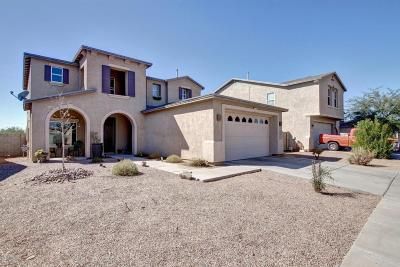 Tucson Single Family Home For Sale: 6968 S Martlet Drive
