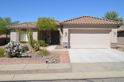 Continental Ranch Sunflower Single Family Home Active Contingent: 7984 W Wandering Spring Way