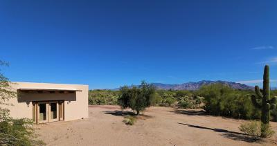 Tucson Single Family Home For Sale: 4255 W Potvin Lane