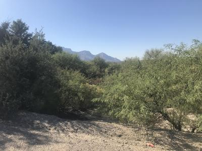 Catalina Residential Lots & Land For Sale: 4420 E Golder Ranch Drive