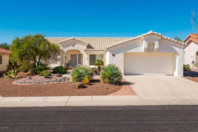 Oro Valley Single Family Home For Sale: 14521 N Rock Springs Lane