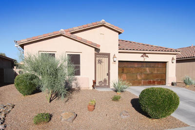 Marana Single Family Home Active Contingent: 4500 W Harmony Ranch Place