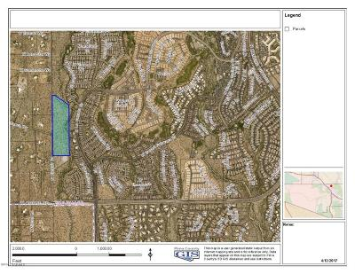 Oro Valley Residential Lots & Land For Sale: N La Canada #29