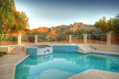 Oro Valley Single Family Home Active Contingent: 11460 N Flying Bird Drive