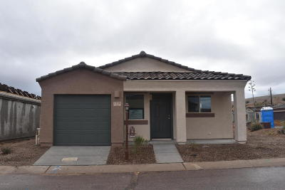 Sahuarita Single Family Home For Sale: 1308 W Vuelta Oruga