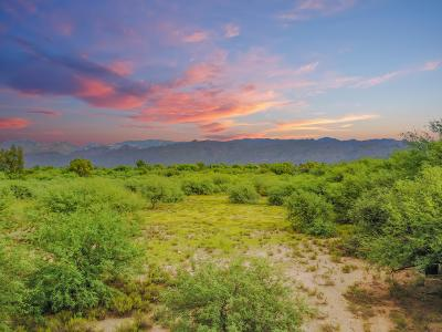 Tucson Residential Lots & Land For Sale: 1422 N Smokey Springs Road