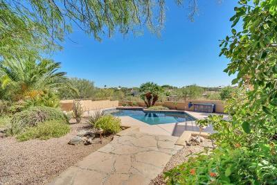 Tucson Single Family Home For Sale: 6910 N Camino De Las Candelas