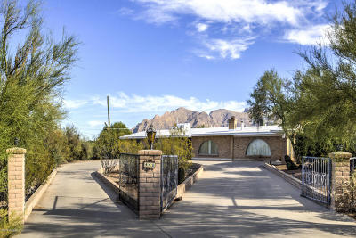 Single Family Home For Sale: 441 E Canyon View Place