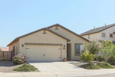 Marana Single Family Home For Sale: 14174 N Spear Point Way