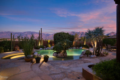 Oro Valley Single Family Home For Sale: 12178 N Red Mountain Drive
