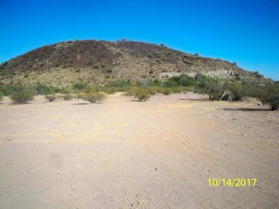 Residential Lots & Land For Sale: 8165 S Worden Road