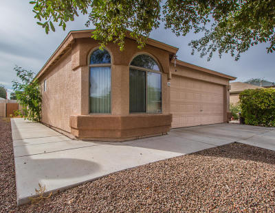 Pima County Single Family Home For Sale: 4246 E Mesquite Desert Trail