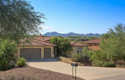 Oro Valley Single Family Home For Sale: 12707 N Morgan Ranch Road