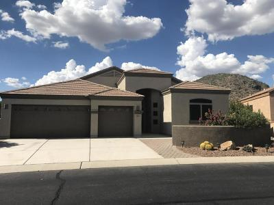 Marana Single Family Home For Sale: 5098 W Coyote Gulch Loop